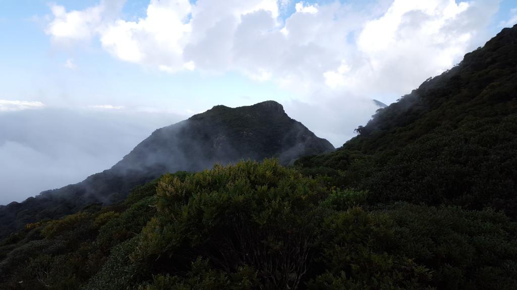 Taquaripoca visto da campo ao lado do Serro Verde, desse ponto em diante precisa varar mato.