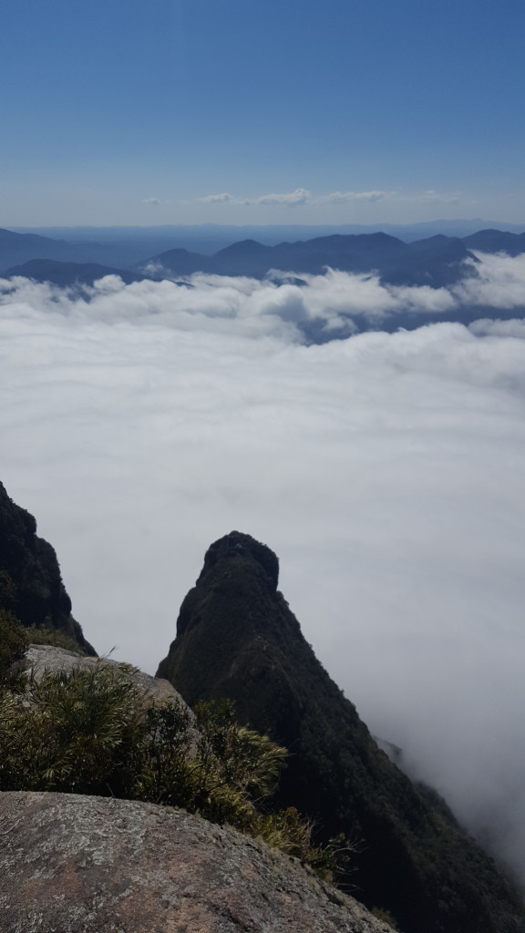Abrolhos visto do cume da Ponta do Tigre.