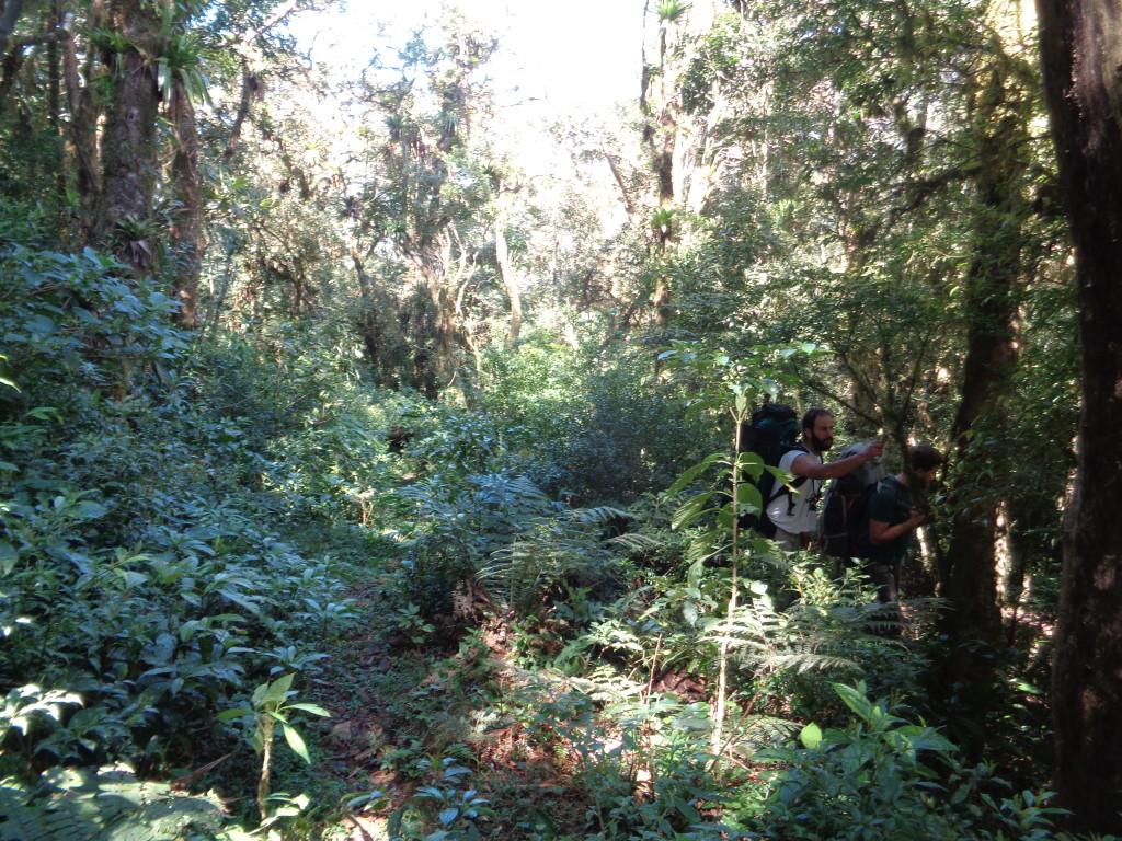 Marcio e Italo na entrada da trilha arrumando a fita de indicação.