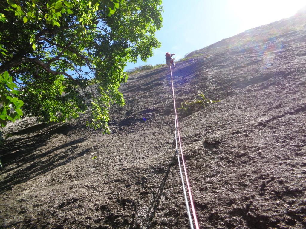 Eu guiando a primeira enfiada da via, o primeiro grampo fica a uns 10 metros do chão, a arvore é um bom ponto de referencia para começar a escalar. Alguns metros subindo a esquerda da via Oswaldo Pereira.